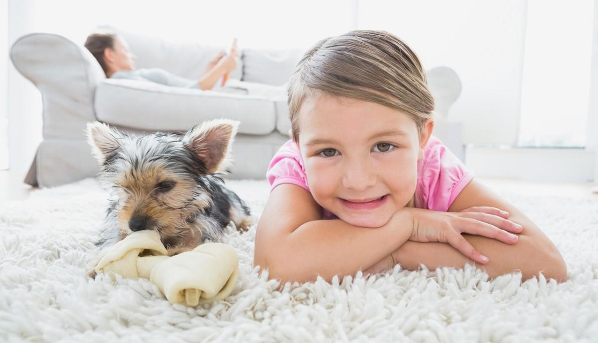 Como saber se meu cão está com vermes?
